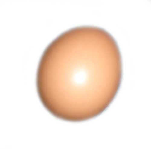 Ein-Ei